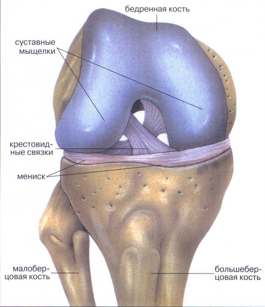 fáj a kis láb ízülete artrózis és annak gyógykezelése