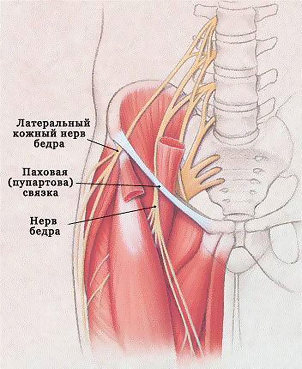 Yürürken kalça ekleminde ağrı: nedenleri ve tedavisi. Kalça yürüyüş sırasında neden ağrıyor